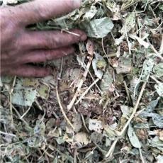 河南花生秧價格 羊草批發 花生秧草粉