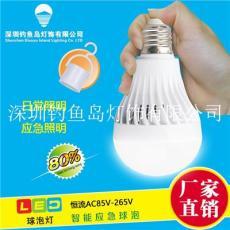 智能應急球泡燈停電應急球泡燈12W充電燈泡