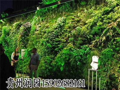 毕节和织金垂直立体植物种植设计及施工