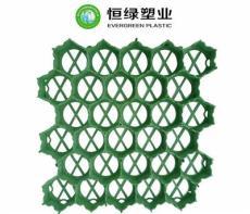 广东专业生产停车场植草板 植草格