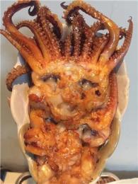 現烤魷魚須廠家直銷