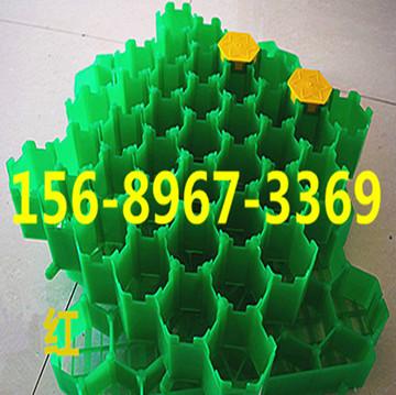 欢迎光临//秦皇岛塑料植草格价格 有限公司