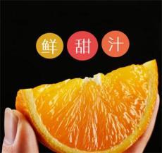 永兴冰糖橙品质极优现摘现卖