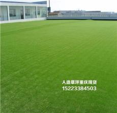 重庆人造草坪施工方案哪里买
