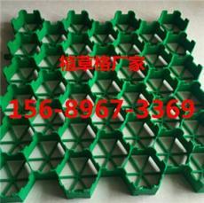 滄州塑料植草格價格 有限公司 歡迎你
