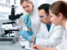 75號工業防霉劑OBPA防霉劑