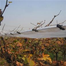 葡萄避雨棚用固膜卡压膜卡竹夹