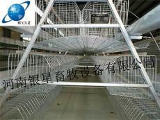 河南新型蛋鸡养殖笼设备售后丨养鸡场育雏笼