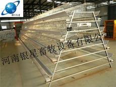 河南新型蛋鸡养殖笼厂家销售丨养鸡场育雏笼