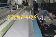 GCL天然钠基膨润土防水毯