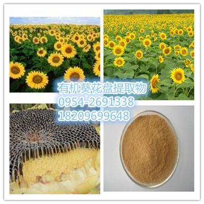 葵花盘提取物 向日葵花盘粉 油葵花盘粉