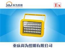 尚升泰SW8131防爆节能泛光灯 LED照明灯