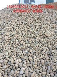 台州路桥鹅卵石/变压器鹅卵石√