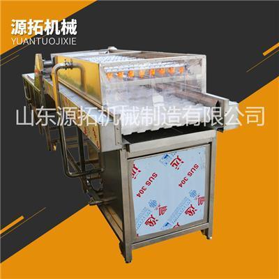 毛刷辊高压喷淋平行辊果蔬清洗机