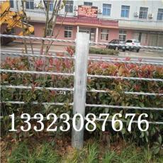 钢绞线护栏厂家景区喷塑镀锌缆瑞批发销售