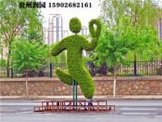 貴陽道路廣場綠化及窗陽臺立體綠化