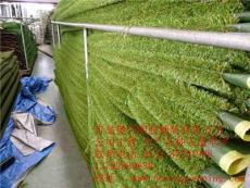 青岛仿真塑料草坪生产厂家 人造草公司