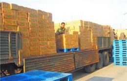 杭州到古蔺县物流专线%集装箱托运