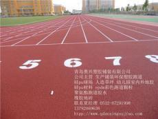 山东青岛新标准塑胶跑道施工厂家