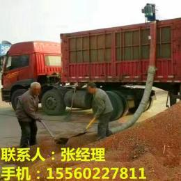 自动上车机 仓库油菜籽装车机 电动输送机