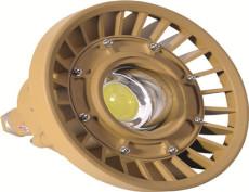 尚升泰SW110防爆LED泛光灯SW110节能SW110