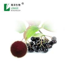 醫藥原料漿果提取物 黑果花楸提取物花青素