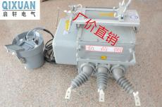 外置电压互感器ZW20-12F