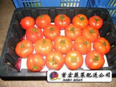 南城蔬菜配送中心 2018-04-21