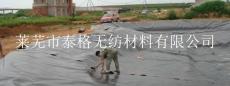 土工膜 HDPE膜 垃圾填埋场人工湖 防渗膜