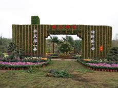 立体花坛设计制作过程