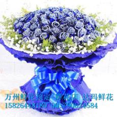 万州鲜花店