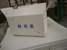 纸箱型塑料周转箱
