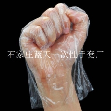 LDPE材質衛生手套生產廠家
