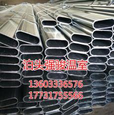 廠家供應大量溫室大棚骨架鍍鋅帶橢圓管骨架