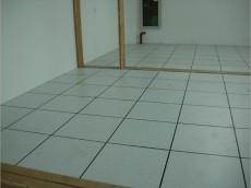 榆林40陶瓷防靜電地板防靜電地板廠家