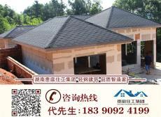 轻钢结构别墅图纸设计施工案列湖南四川湖北