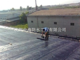 中海沈阳隧道防水堵漏全程无忧
