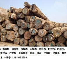 重蚁木是什么木材 重蚁木价格多少