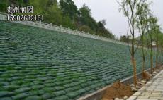 貴陽市清鎮邊坡綠化和護坡綠化施工價格