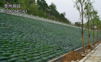 贵阳市清镇边坡绿化和护坡绿化施工价格