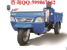出售福田五星福星558自卸三轮摩托车