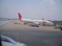 物品/行李被扣机场代理报关费用是多少大概