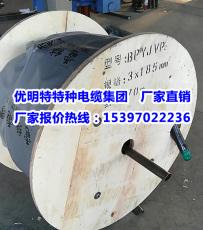 BPYJVP電纜浙江杭州桐廬縣權威加工廠家-變頻電纜