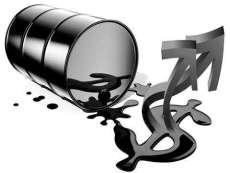 海南现货交易平台隆重面向全国招商招代理