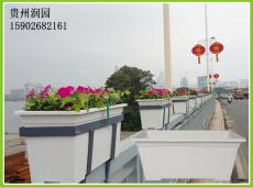 遵義垂直綠化系統中的人行天橋橋梁植物種植