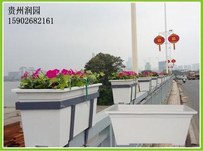 遵义垂直绿化系统中的人行天桥桥梁植物种植