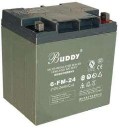 BUDDY蓄电池厂商最新报价大全