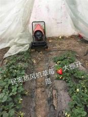 供应民奥草莓大棚冬季升温器柴油热风机