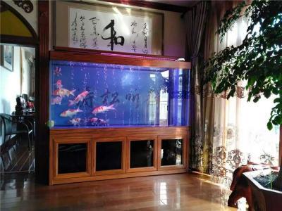 济南高新区专业上门清洗鱼缸