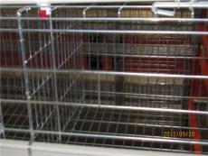 养鸡设备 鸡笼 自动喂料机 自动清粪机 小鸡